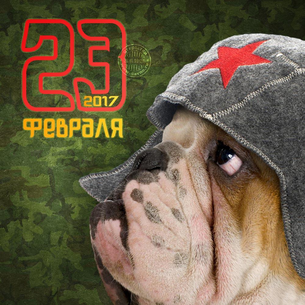 Прикольная открытка с 23 февраля - Д